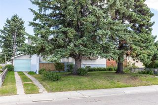 Photo 45: 1830 41 Street SE in Calgary: Forest Lawn Detached for sale : MLS®# A1022931