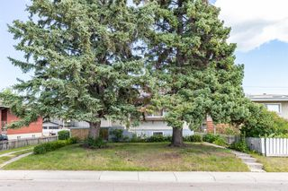Photo 47: 1830 41 Street SE in Calgary: Forest Lawn Detached for sale : MLS®# A1022931