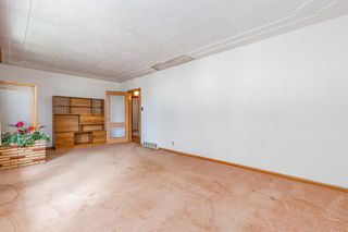 Photo 20: 1830 41 Street SE in Calgary: Forest Lawn Detached for sale : MLS®# A1022931
