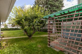 Photo 16: 1830 41 Street SE in Calgary: Forest Lawn Detached for sale : MLS®# A1022931