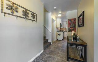 Photo 29: 4804 124 Street in Edmonton: Zone 15 House for sale : MLS®# E4212005