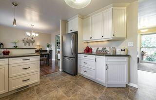 Photo 46: 4804 124 Street in Edmonton: Zone 15 House for sale : MLS®# E4212005