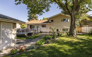 Photo 5: 4804 124 Street in Edmonton: Zone 15 House for sale : MLS®# E4212005