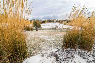 Photo 36: 446 6079 MAYNARD Way in Edmonton: Zone 14 Condo for sale : MLS®# E4218774
