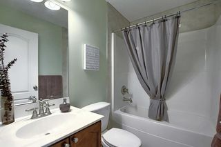 Photo 19: 233 Chapalina Mews SE in Calgary: Chaparral Detached for sale : MLS®# A1044998