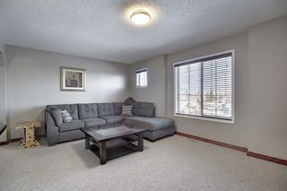 Photo 23: 233 Chapalina Mews SE in Calgary: Chaparral Detached for sale : MLS®# A1044998