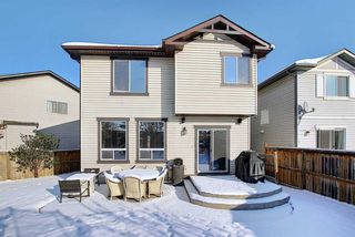 Photo 35: 233 Chapalina Mews SE in Calgary: Chaparral Detached for sale : MLS®# A1044998