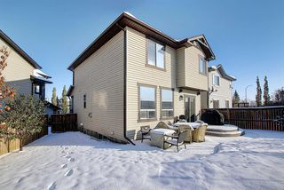 Photo 37: 233 Chapalina Mews SE in Calgary: Chaparral Detached for sale : MLS®# A1044998