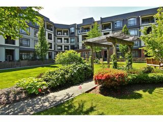 "Photo 15: 301 8880 202ND Street in Langley: Walnut Grove Condo for sale in ""THE RESIDENCES AT VILLAGE SQUARE"" : MLS®# F1409404"