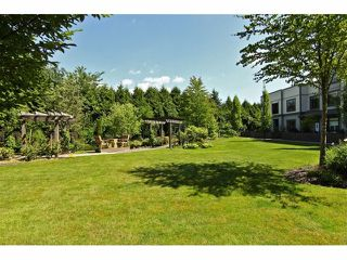 "Photo 17: 301 8880 202ND Street in Langley: Walnut Grove Condo for sale in ""THE RESIDENCES AT VILLAGE SQUARE"" : MLS®# F1409404"