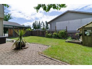 Photo 20: 12765 26B Avenue in Surrey: Crescent Bch Ocean Pk. House for sale (South Surrey White Rock)  : MLS®# F1415859