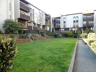 """Photo 22: 18 365 GINGER Drive in New Westminster: Fraserview NW Condo for sale in """"FRASER MEWS"""" : MLS®# V1121298"""