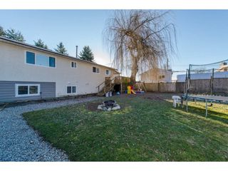 Photo 20: 8227 VIOLA Place in Mission: Mission BC House for sale : MLS®# R2135210