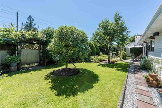 Photo 19: 16130 95A Avenue in Surrey: Fleetwood Tynehead House for sale : MLS®# R2181782