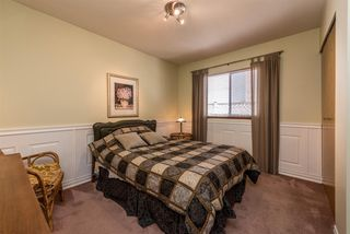 Photo 15: 16130 95A Avenue in Surrey: Fleetwood Tynehead House for sale : MLS®# R2181782