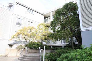 Photo 12: 202 3220 W 4TH Avenue in Vancouver: Kitsilano Condo for sale (Vancouver West)  : MLS®# R2204725
