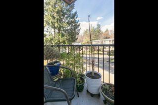 "Photo 19: 43 38177 WESTWAY Avenue in Squamish: Valleycliffe Condo for sale in ""Westway Village"" : MLS®# R2249405"