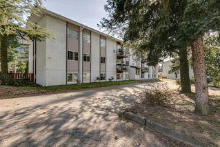 "Photo 20: 43 38177 WESTWAY Avenue in Squamish: Valleycliffe Condo for sale in ""Westway Village"" : MLS®# R2249405"