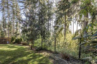 Photo 17: 26 HAWTHORN Drive in Port Moody: Heritage Woods PM House for sale : MLS®# R2264802