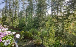 Photo 19: 26 HAWTHORN Drive in Port Moody: Heritage Woods PM House for sale : MLS®# R2264802