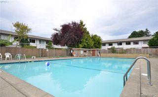 Photo 19: 3540 Tillicum Rd in VICTORIA: SW Tillicum Condo for sale (Saanich West)  : MLS®# 791625
