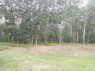 Main Photo: 101 Hearthstone Drive: Rural Parkland County Rural Land/Vacant Lot for sale : MLS®# E4126095
