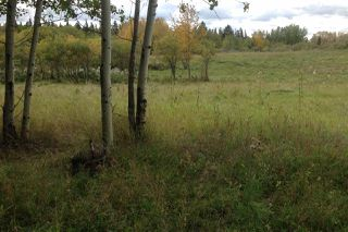 Photo 8: 2-51222 Rge Road 270: Rural Parkland County Rural Land/Vacant Lot for sale : MLS®# E4133498