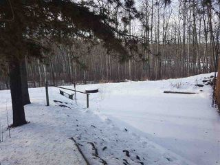 Photo 24: 5 53306 RANGE ROAD 20: Rural Parkland County House for sale : MLS®# E4135909