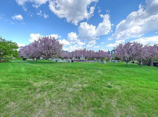 Photo 33: 302 Garrison Square SW in Calgary: Garrison Woods Row/Townhouse for sale : MLS®# C4225939