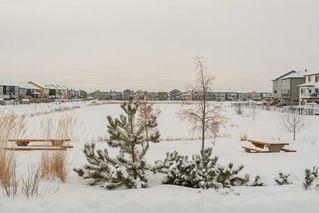 Photo 28: 12156 172 Avenue in Edmonton: Zone 27 House for sale : MLS®# E4144460