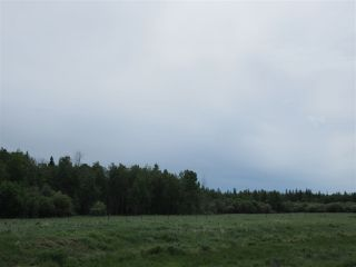 Photo 13: RR 214 Twp Rd 624: Rural Thorhild County Rural Land/Vacant Lot for sale : MLS®# E4150908