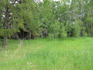 Photo 16: RR 214 Twp Rd 624: Rural Thorhild County Rural Land/Vacant Lot for sale : MLS®# E4150908