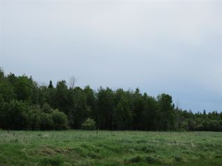 Photo 14: RR 214 Twp Rd 624: Rural Thorhild County Rural Land/Vacant Lot for sale : MLS®# E4150908