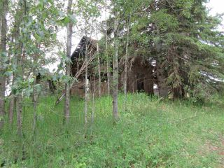 Photo 3: RR 214 Twp Rd 624: Rural Thorhild County Rural Land/Vacant Lot for sale : MLS®# E4150908