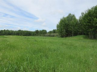 Photo 19: RR 214 Twp Rd 624: Rural Thorhild County Rural Land/Vacant Lot for sale : MLS®# E4150908