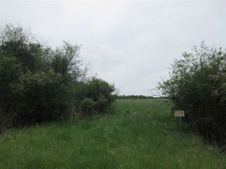 Photo 10: RR 214 Twp Rd 624: Rural Thorhild County Rural Land/Vacant Lot for sale : MLS®# E4150908
