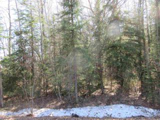 Photo 23: RR 214 Twp Rd 624: Rural Thorhild County Rural Land/Vacant Lot for sale : MLS®# E4150908