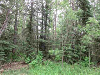 Photo 6: RR 214 Twp Rd 624: Rural Thorhild County Rural Land/Vacant Lot for sale : MLS®# E4150908