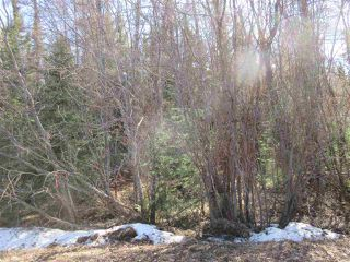 Photo 24: RR 214 Twp Rd 624: Rural Thorhild County Rural Land/Vacant Lot for sale : MLS®# E4150908