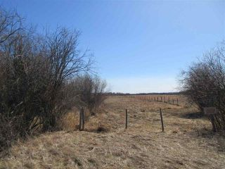 Photo 25: RR 214 Twp Rd 624: Rural Thorhild County Rural Land/Vacant Lot for sale : MLS®# E4150908