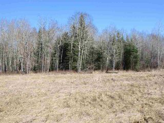 Photo 29: RR 214 Twp Rd 624: Rural Thorhild County Rural Land/Vacant Lot for sale : MLS®# E4150908