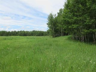 Photo 15: RR 214 Twp Rd 624: Rural Thorhild County Rural Land/Vacant Lot for sale : MLS®# E4150908