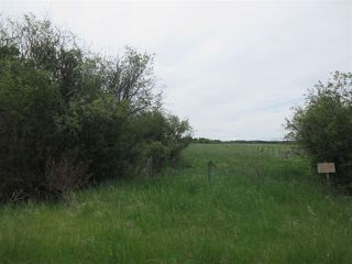 Photo 9: RR 214 Twp Rd 624: Rural Thorhild County Rural Land/Vacant Lot for sale : MLS®# E4150908