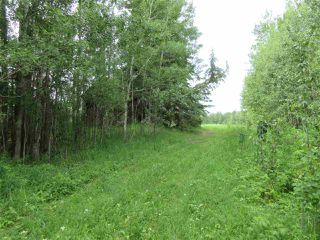 Photo 1: RR 214 Twp Rd 624: Rural Thorhild County Rural Land/Vacant Lot for sale : MLS®# E4150908