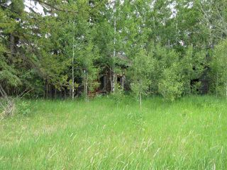 Photo 17: RR 214 Twp Rd 624: Rural Thorhild County Rural Land/Vacant Lot for sale : MLS®# E4150908