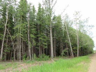 Photo 5: RR 214 Twp Rd 624: Rural Thorhild County Rural Land/Vacant Lot for sale : MLS®# E4150908