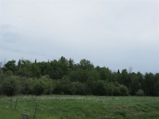 Photo 12: RR 214 Twp Rd 624: Rural Thorhild County Rural Land/Vacant Lot for sale : MLS®# E4150908