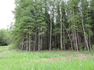 Photo 4: RR 214 Twp Rd 624: Rural Thorhild County Rural Land/Vacant Lot for sale : MLS®# E4150908
