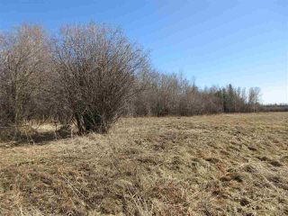 Photo 26: RR 214 Twp Rd 624: Rural Thorhild County Rural Land/Vacant Lot for sale : MLS®# E4150908