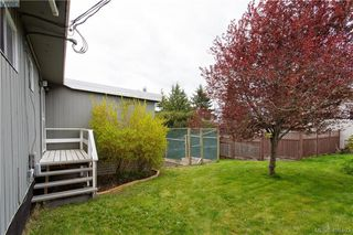 Photo 37: 6521 Golledge Ave in SOOKE: Sk Sooke Vill Core House for sale (Sooke)  : MLS®# 811620